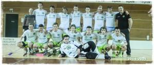 FBK Polanska banda 2014-2015